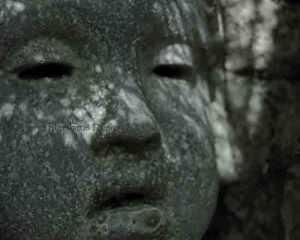 Watermark-stone-face-Vander-Veer